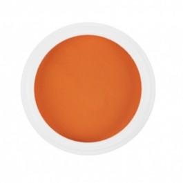Polvere colorata acrilico per Ricostruzione Unghie da 5 gr - 6166