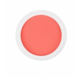 Polvere colorata acrilico per Ricostruzione Unghie da 5 gr - 6245
