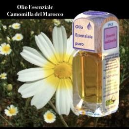 Puro olio essenziale d'origine convenzionale di CAMOMILLA MAROCCO (Ormenis multicaulis)