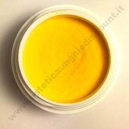 Polvere colorata acrilico per Ricostruzione Unghie da 5 gr - 6110
