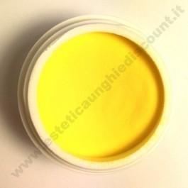 Polvere colorata acrilico per Ricostruzione Unghie da 5 gr - 6115
