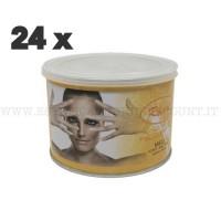 Cera Liposolubile Roial Barattolo al Miele 400 ml conf.24 pezzi.