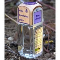 Puro olio essenziale d'origine convenzionale di PINO SILVESTRE (Pinus sylvestris)