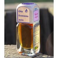 Puro olio essenziale d'origine convenzionale di TIMO ROSSO (Thymus vulgaris)