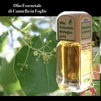 Puro olio essenziale d'origine BIOLOGICA di CANNELLA FOGLIE (Cinnamomum cassia)