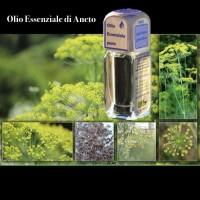 Puro olio essenziale d'origine convenzionale di ANETO (Anethum gravolens)