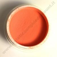 Polvere colorata acrilico per Ricostruzione Unghie da 5 gr - 6109