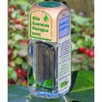 Puro olio essenziale d'origine convenzionale di WINTERGREEN (Gaultheria procumbens)