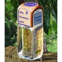 Puro olio essenziale d'origine convenzionale di CANFORA (Cinnamomum camphora)