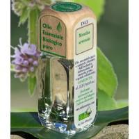 Puro olio essenziale d'origine convenzionale di MENTA CAMPESTRE (Mentha arvensis).