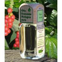 Puro olio essenziale d'origine BIOLOGICA di PEPE NERO (Piper nigrum).