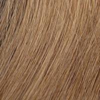 Extension Di Biase con Clips Capelli Naturali indiani colore 17