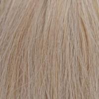 Extension Di Biase con Clips Capelli Naturali indiani colore 24