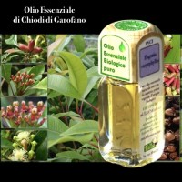 Puro olio essenziale d'origine BIOLOGICA di CHIODO DI GAROFANO (Syzygium aromaticum)