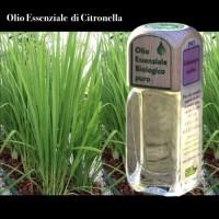 Puro olio essenziale d'origine BIOLOGICA di CITRONELLA (Cymbopogon nardus)