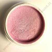 Polvere colorata acrilico per Ricostruzione Unghie da 5 gr - 2803