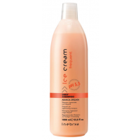 Daily Shampoo Ice Creme Inebrya all'arancia speziata 1000ml